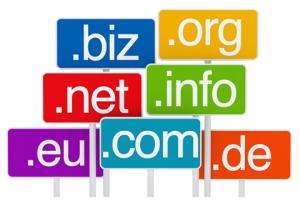 Domain Names 300x209 1